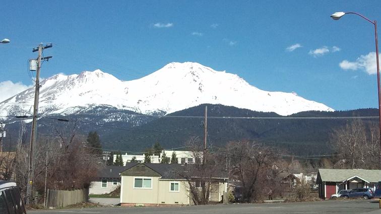 Mount Shasta 1