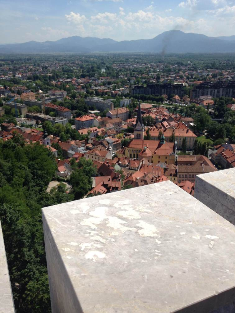 The view from the castle tower.