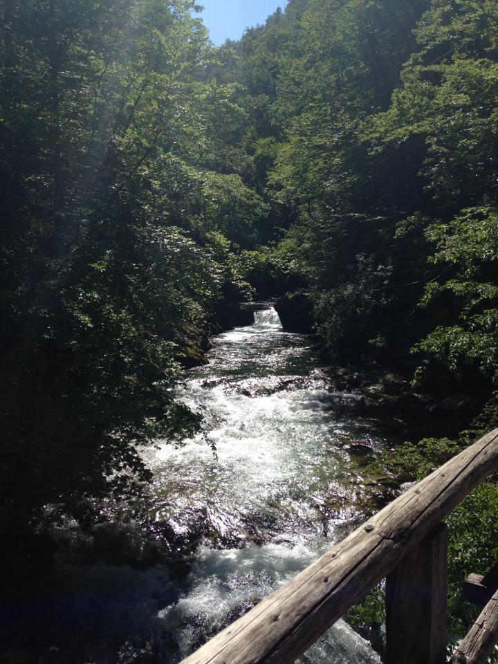 More lovely gorge