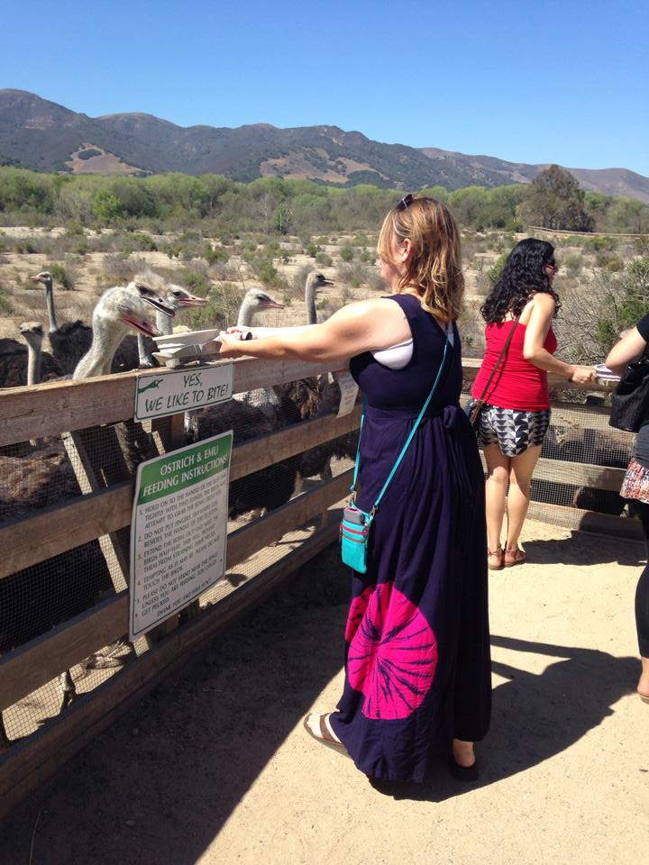 Ashton displaying her ostrich-feeding skills.